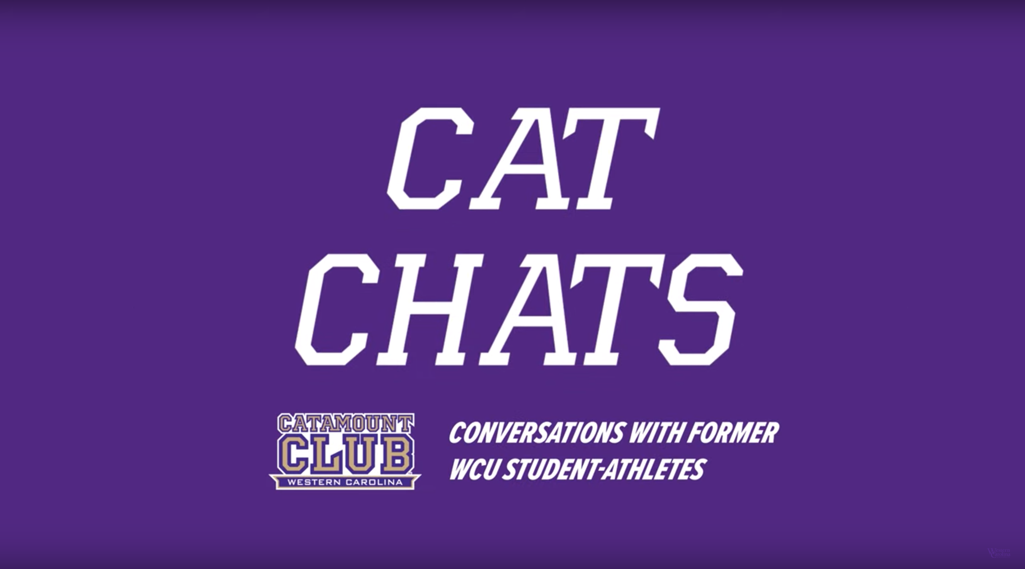 Cat Chats on Purple