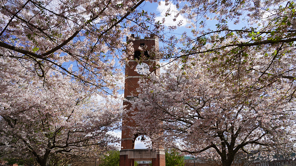 Alumni Tower in the spring