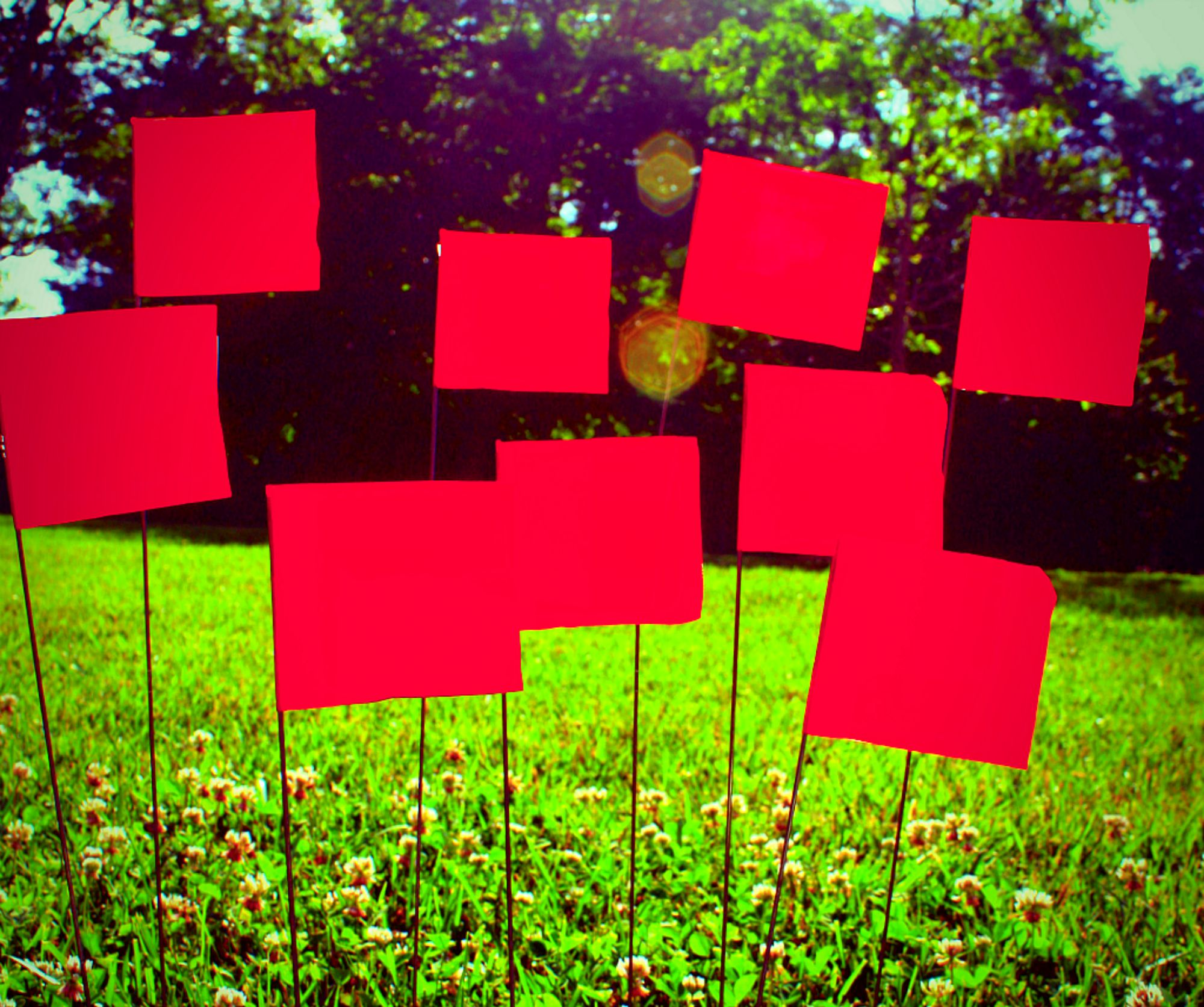 Red flags on the campus lawn.