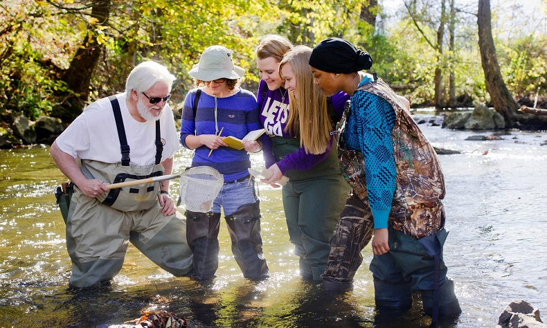 Professor and students doing stream research
