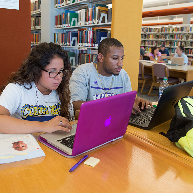 Students studying in the Hunter Library