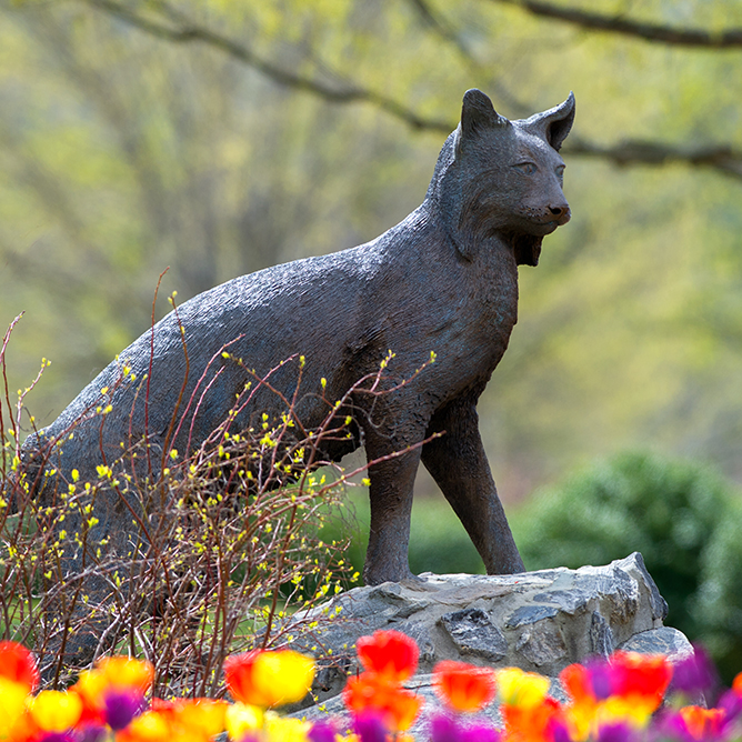 The Catamount Statue on WCU's Cullowhee campus.