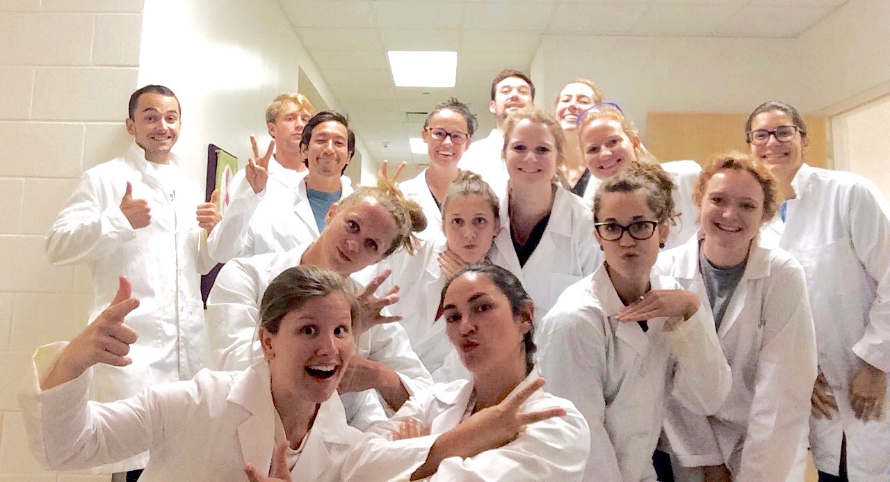 Doctor physical therapy - The Doctor Of Physical Therapy Program Dtp Accepts Students Who Will Begin In August Of Each Year The Program Is Highly Competitive And Only Admits Up To
