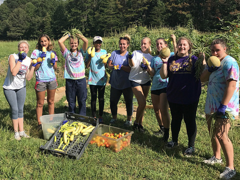 "Students from ""the Ripple Effect"" learning community performing community service in the Cullowhee Community Garden"