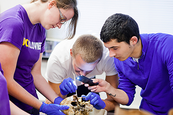Students looking at skull