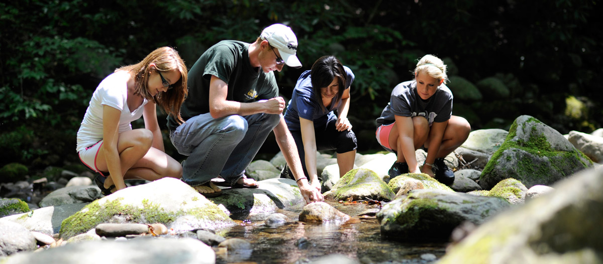 students doing research at a creek
