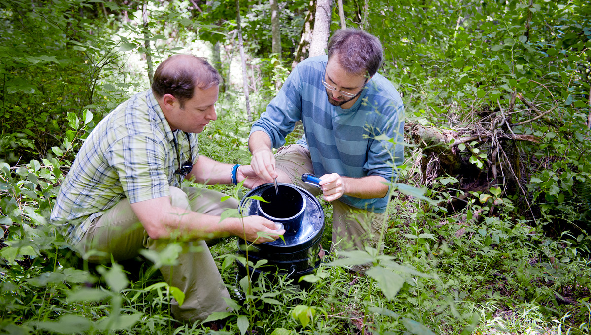Professor and student conducting research in the woods