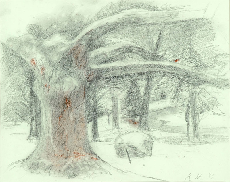 Ruth Miller, American  Snow, 1995-6  Graphite and red conté crayon on paper, 15 x 18 inches  Gift of the Artist