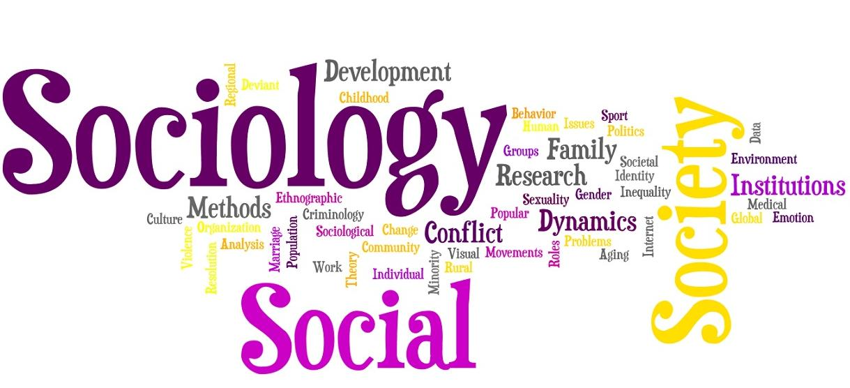 write sociology term papers