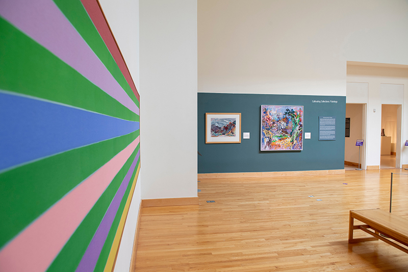 WCU Fine Art Museum Cultivating Collections Exhibition with Colorful paintings visible of different sizes