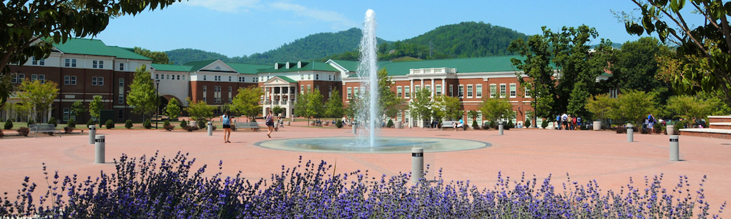 Center of Campus in Summer